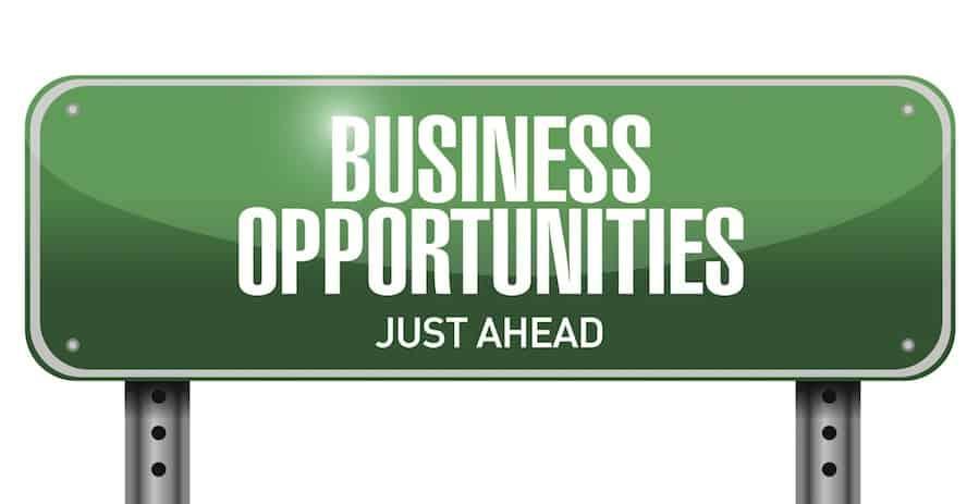 Business Ideas In Village